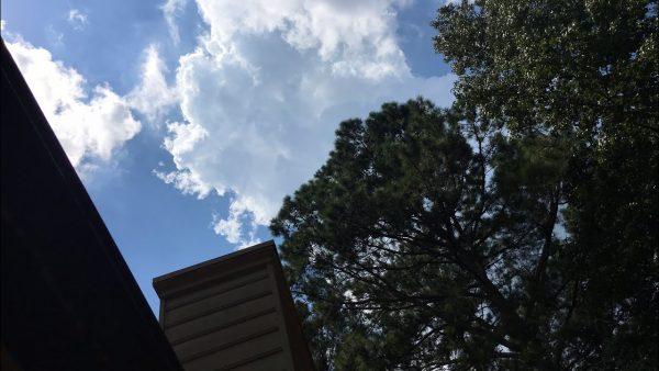 Total Solar Eclipse Day Vlog Three Livestream
